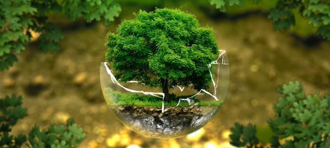 Umweltgerechts Bauen
