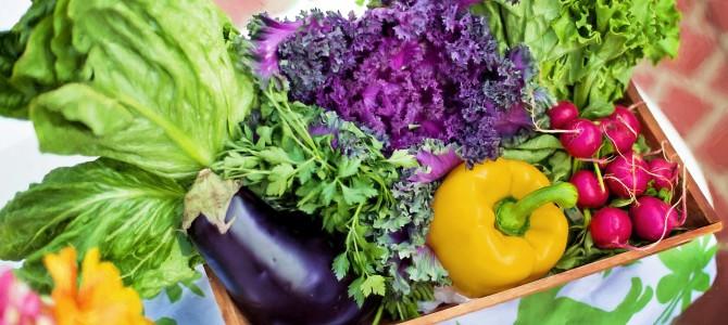 Welche Gemüse vertragen sich nicht im gleichen Beet?