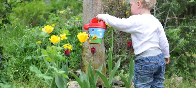 Kindergerechter Garten